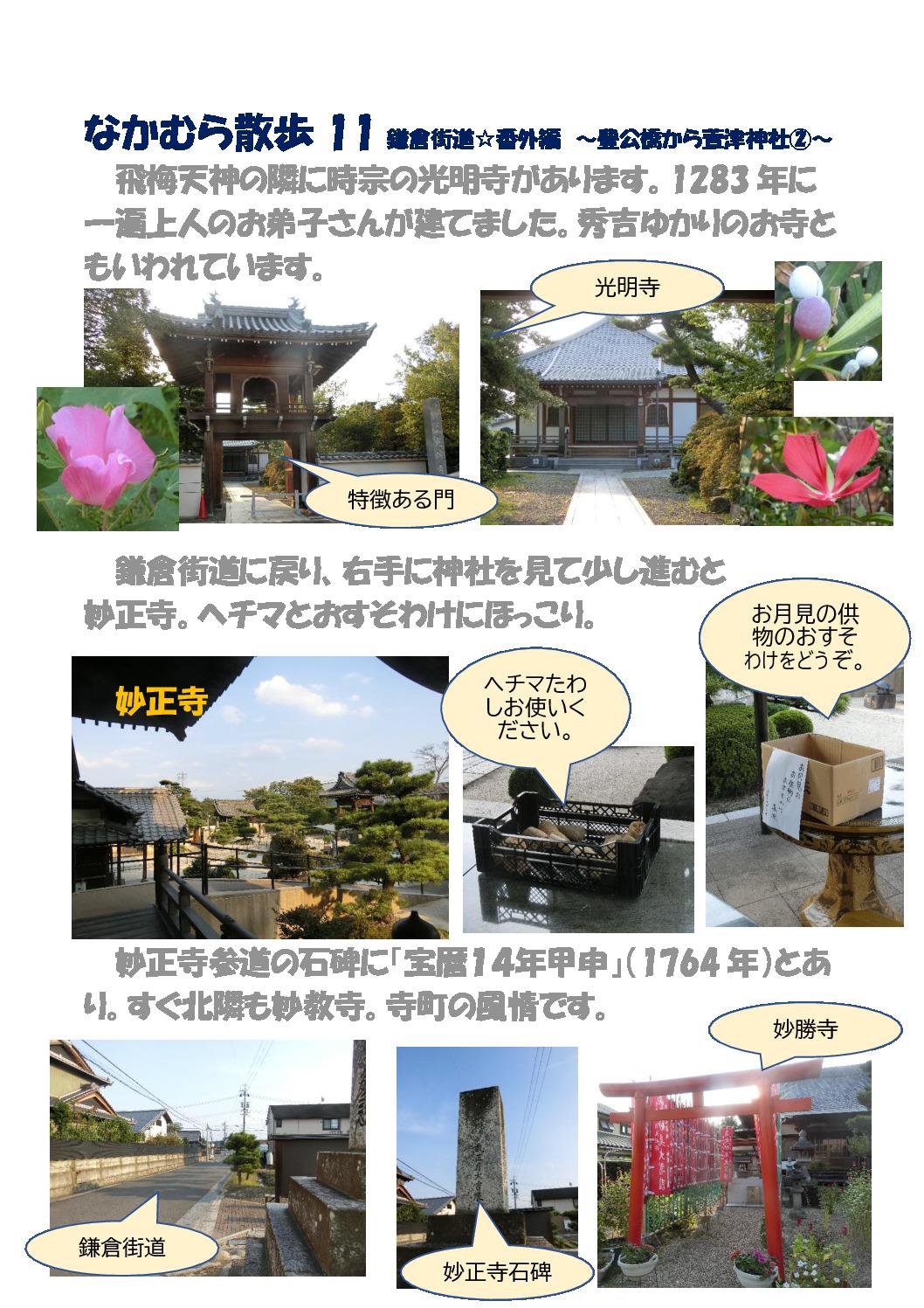 thumbnail of なかむら散歩 11